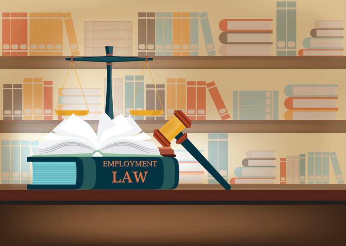 employment law book with scale and mallet in library