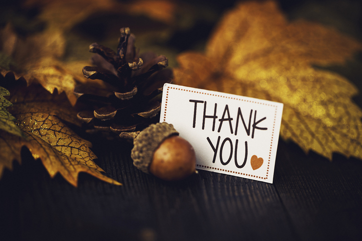 thank you note, leaves, acorn, and pinecone