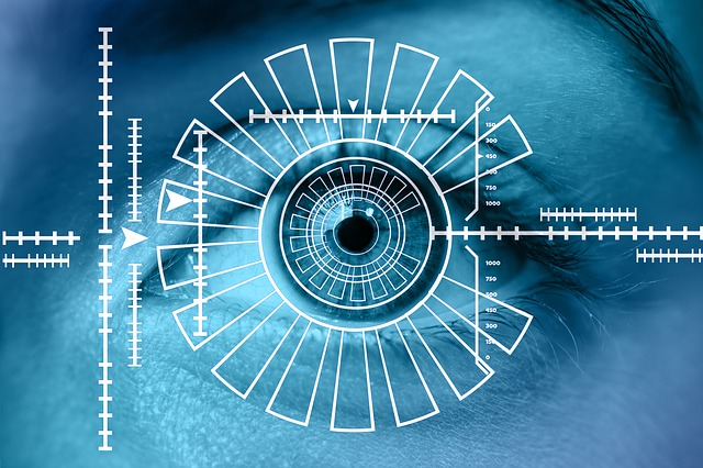 biometric recognition of a person's eye