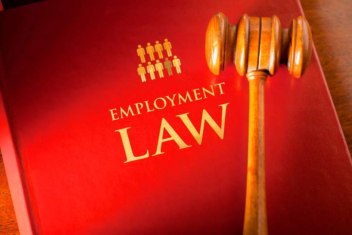 "book titled ""employment law"" with a mallet"