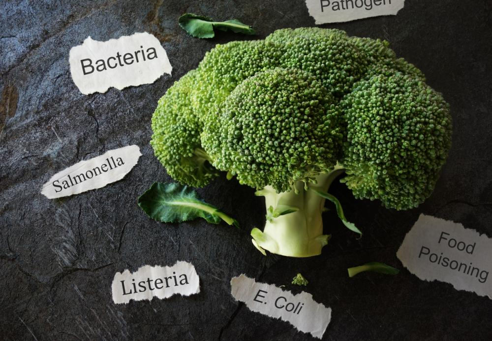 broccoli surrounded by pieces of papers reading: bacteria, salmonella, listeria, e coli, food poisoning